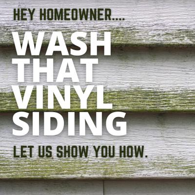 How to Remove Algae From Vinyl Siding